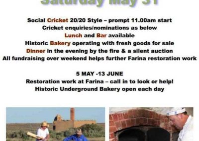 Poster for Cricket Day.