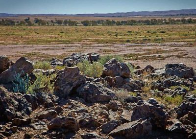 Witchelina land - is this a source of rocks for Farina walls?