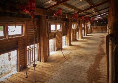Ned;s Corner Station - inside the shearing shed, showing just half of the shearing stands.